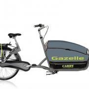 Gazelle Cabby