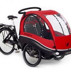 Winther Kangaroo Bike