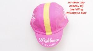 cap_wishbone_pink