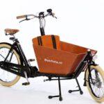 Cargobike Cruiser Short steps