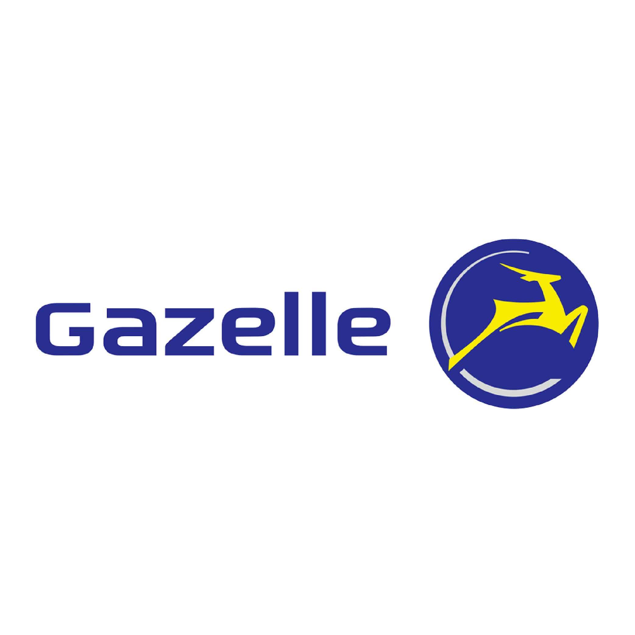 gazelle-fietskar-online-kopen